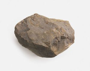 Chert, a type of sedimentary rock