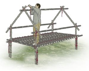 Digital composite illustration of man tying A-frame poles to jungle hut frame to form roof