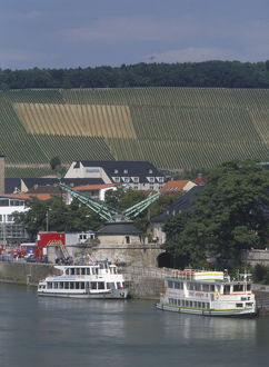 Germany, Bavaria, an old crane near Alte Mainbrucke over the river Main with vineyards