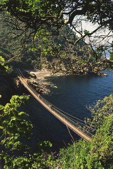A hanging bridge across Storms River Mouth in the Tsitsikamma National Park.