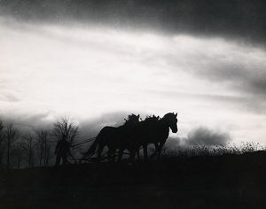 Silhouetted farmer and horses in field