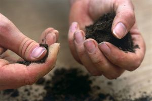 Soil being squeezed between fingers of one hand and cupped in the palm of the other